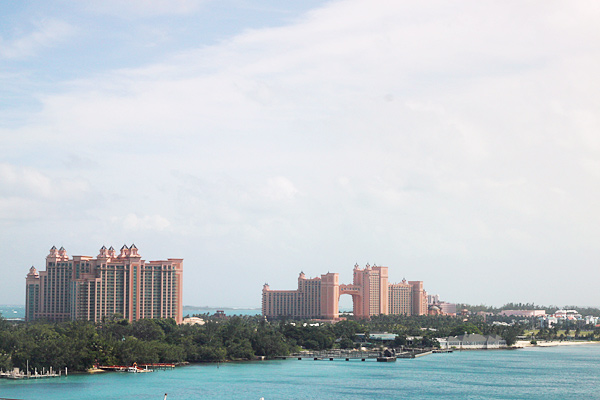 A Wedding Cruise To The Bahamas Part 2  Taryn Williford