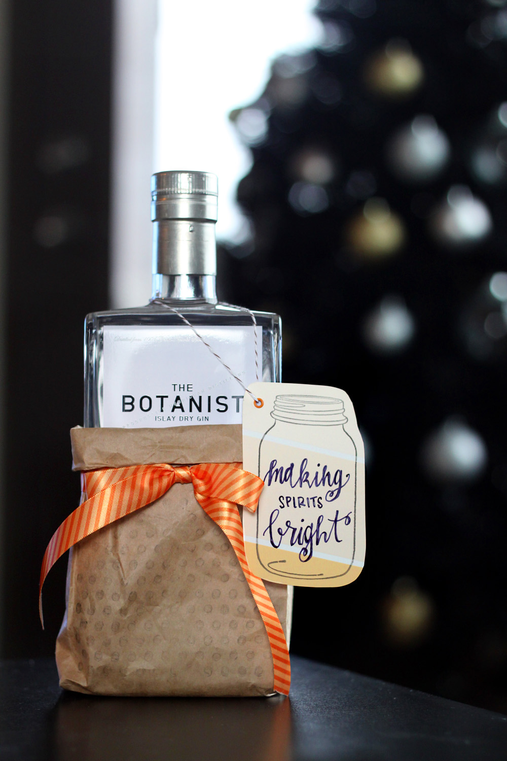 Boozy Gift Bag & Mason Jar Tag